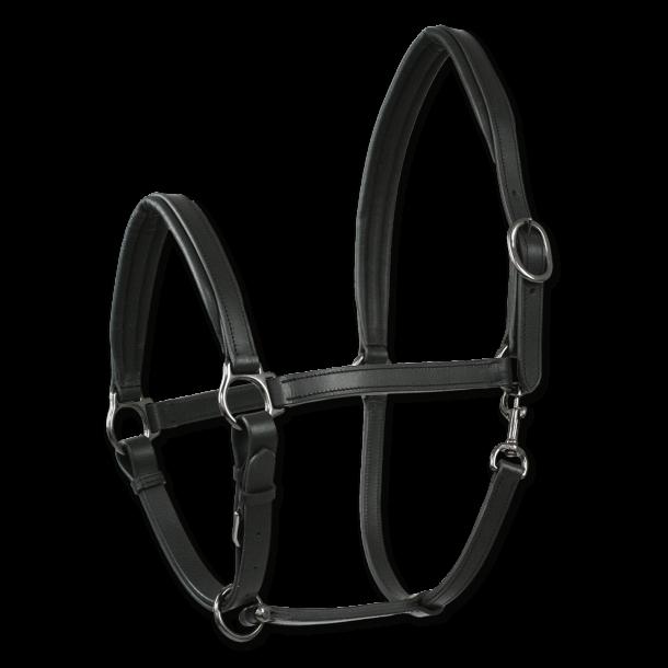 X-line lædergrime, Finesse II
