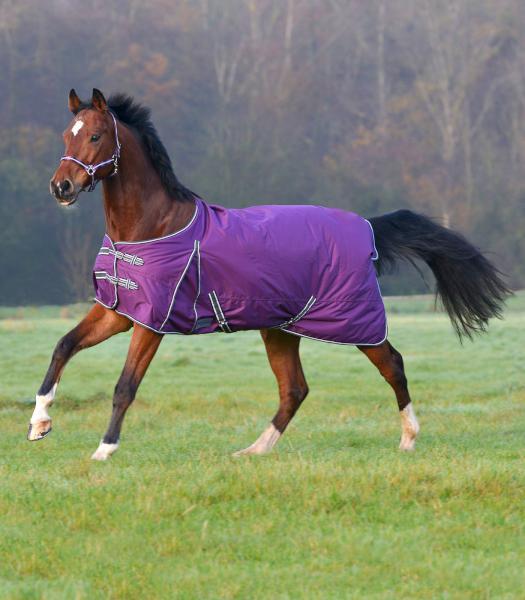 dækken hest